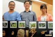 鳥巢影響鳥類演化 女大生研究登上國際期刊