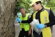 興大研究防樹蟲 「樹幹注射法」搶救百棵刺桐